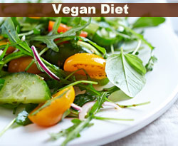 vegan diet example
